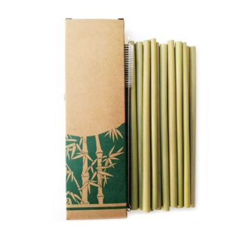 Bamboo Straws - 10 Pcs Set