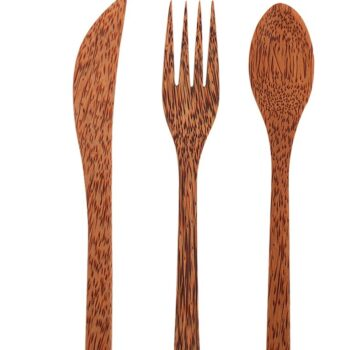 coconut wood cutlery set